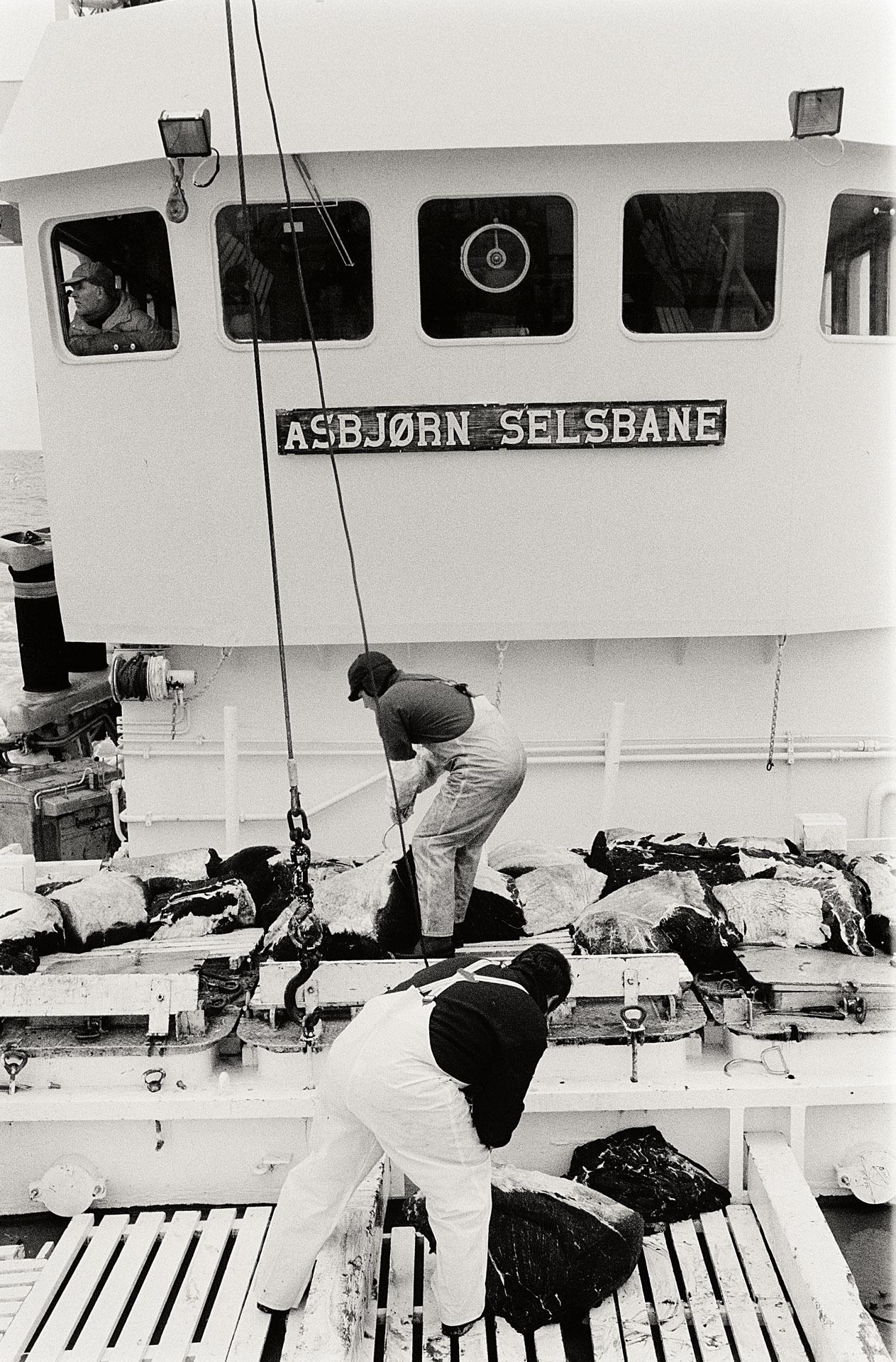 Asbjorn Selsbane 9