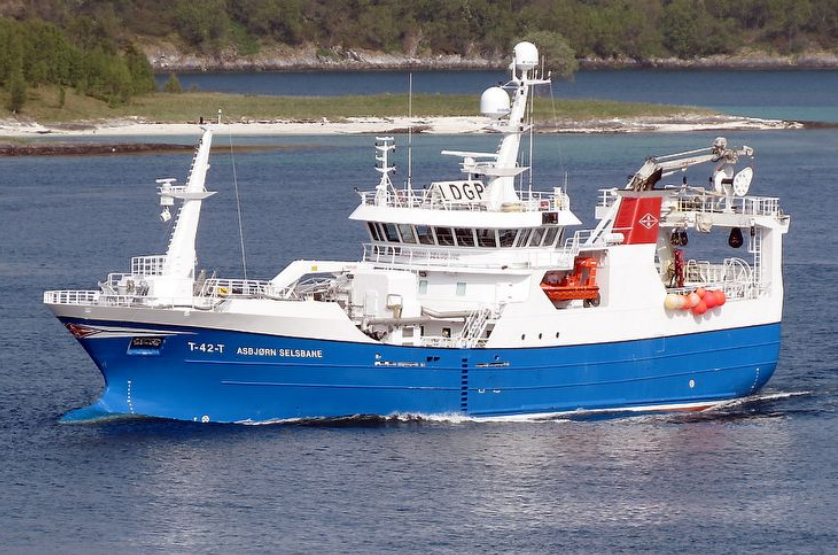 Skipper / Styrmann